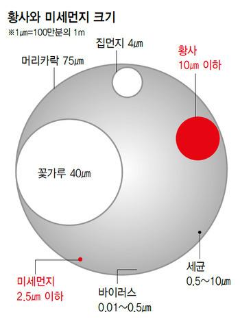 황사와_미세먼지_크기_비교.jpg
